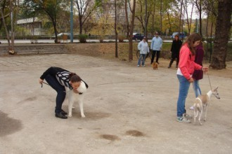 """Изграждат нова площадка за кучета в """"Тракия"""""""