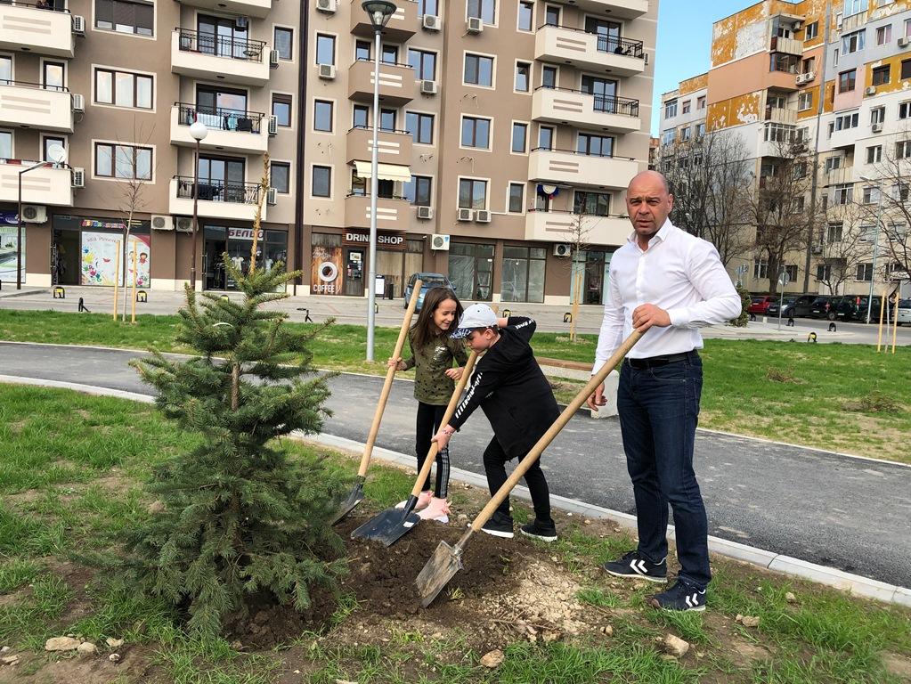 """Преместиха Коледната горичка от стълбите на Каменица в новия парк в """"Тракия"""""""