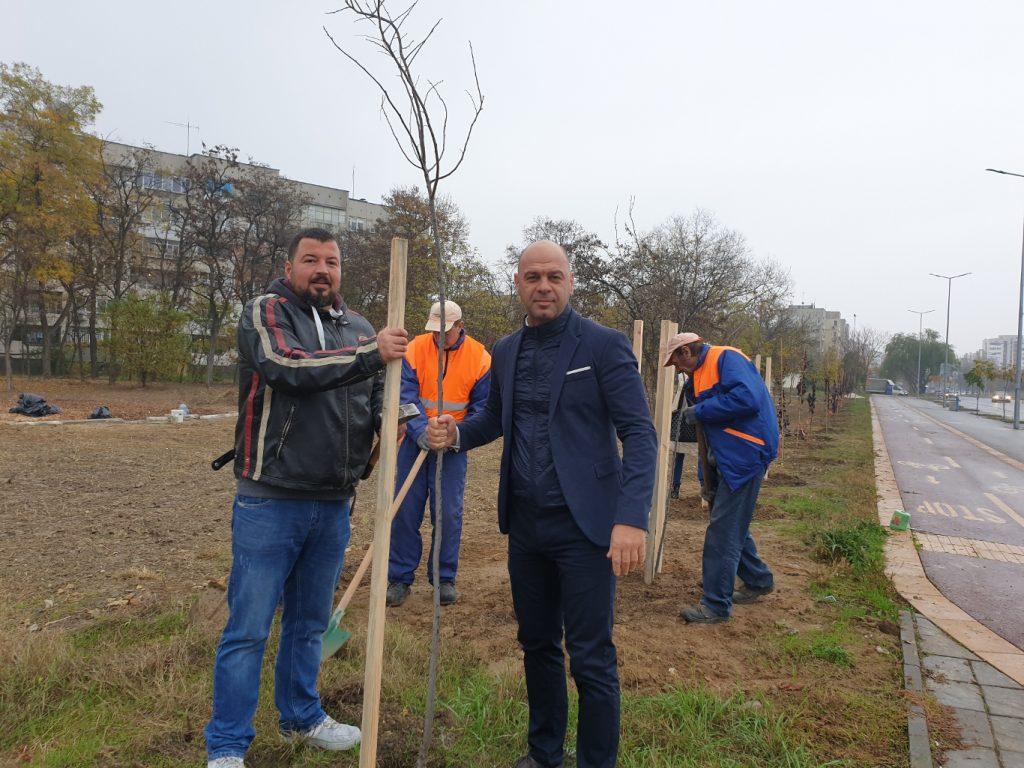 """В """"Тракия"""" залесиха нови дръвчета в пустеещо до скоро място"""