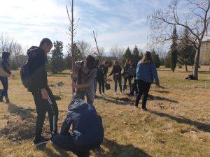 Търговска гимназия засади горичка в Тракия-6