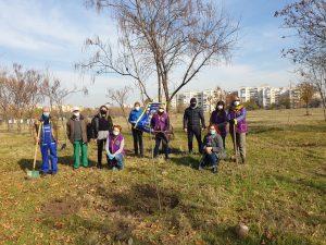 Засадиха дъбова горичка в Тракия