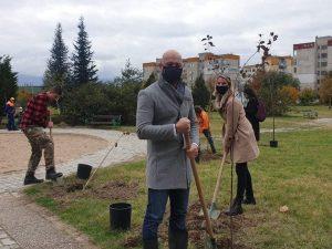 """В """"Тракия"""" граждани и кметство заедно в инициативата """"Засади дърво – създай живот"""""""