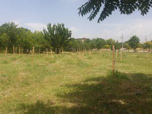 Ново зелено пространство за спорт и отдих в Тракия